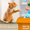 TAMIR (Israel) google play app: Dedi the cat
